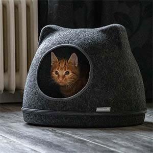 Een rode kater ligt in de katteniglo.